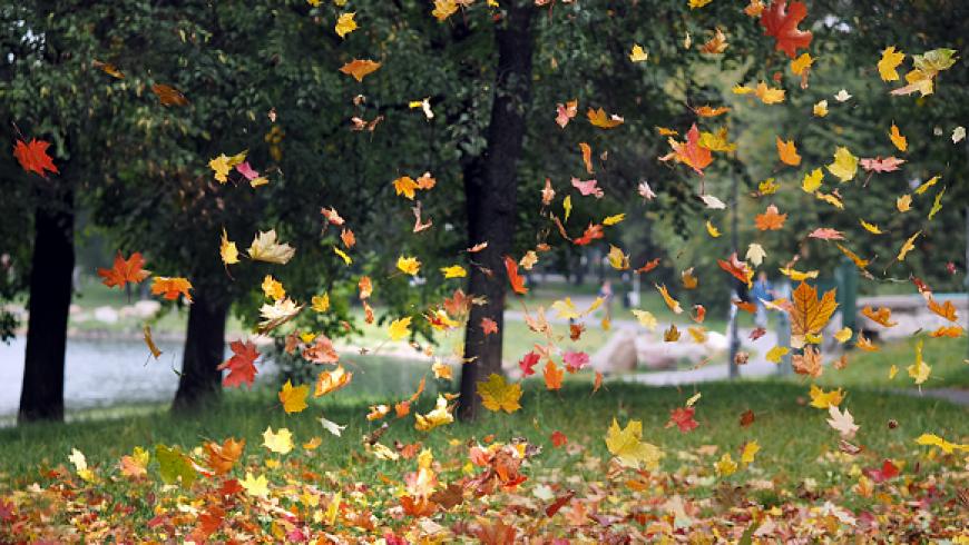 25 september: 'Herfst…. Dansen met Verandering'