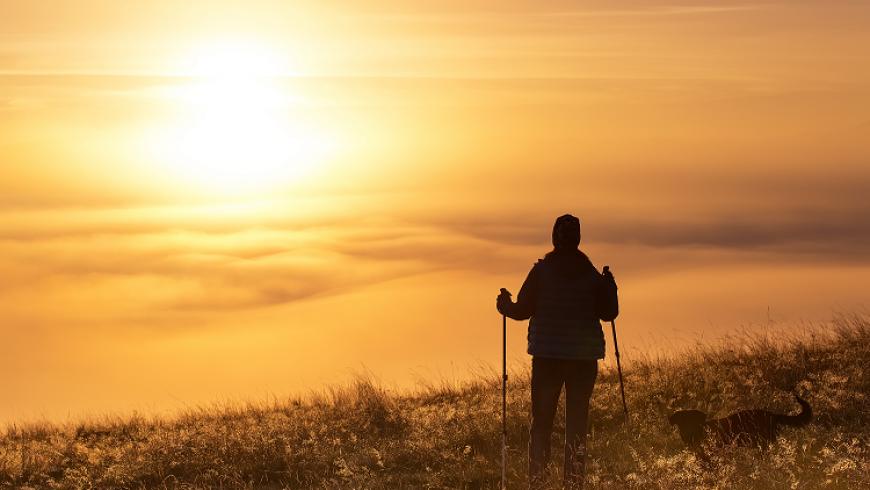 6 voordelen van wandelen