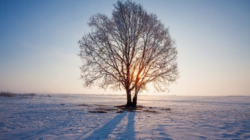8 jan: 'Dans het nieuwe jaar in met jouw Eigenheid'