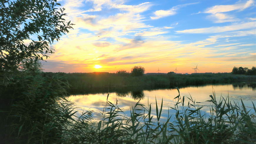 Blog 7 sept: Terug naar de Natuur