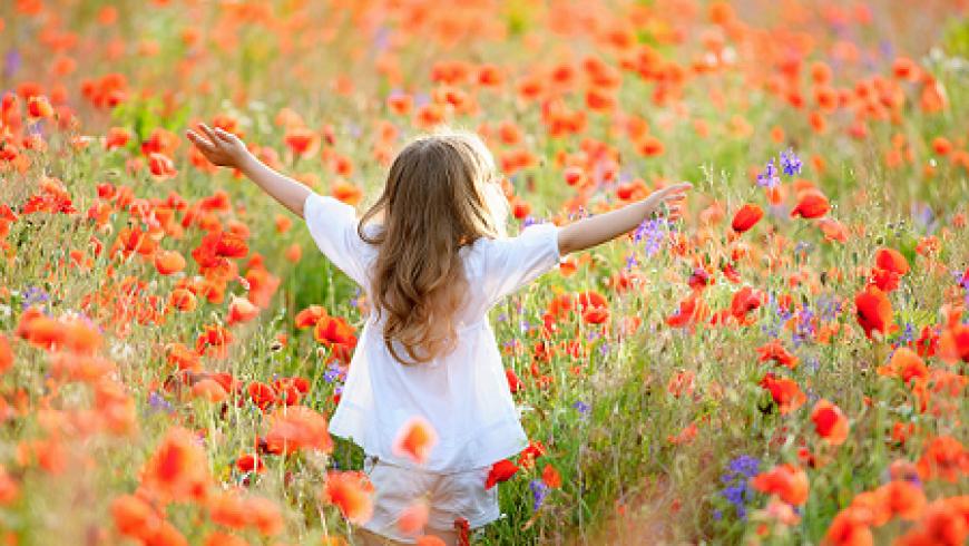 Blog juni: 'Vier de Zomer, Dans het Leven!'