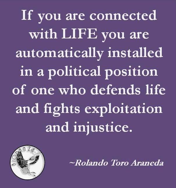 Dit zegt Rolando Toro over het Leven: